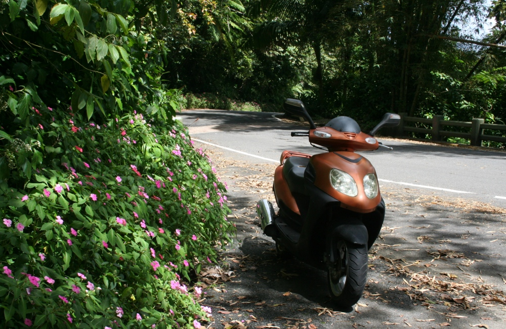 scooter in El Yunque